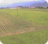 Envie Airfield webcam