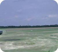 Essen Mulheim an der Ruhr airfield webcam
