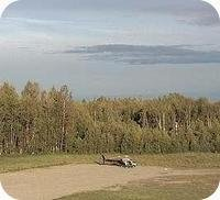 Talkeetna Airport webcam