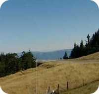 Kneeland Airport webcam