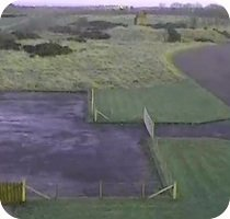 Longside Airfield webcam