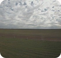 McCaffrey Field Airport webcam