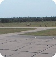 Booneville Airport webcam