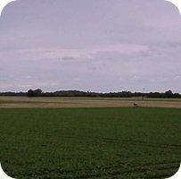 Lufthavn Lolland-Falster Airport webcam