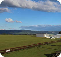 Matamata Glider Airport webcam